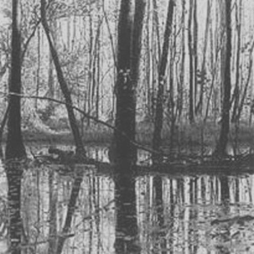 tar river